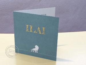 Oudhollands kaartje, diapositief blauw met goudfolie